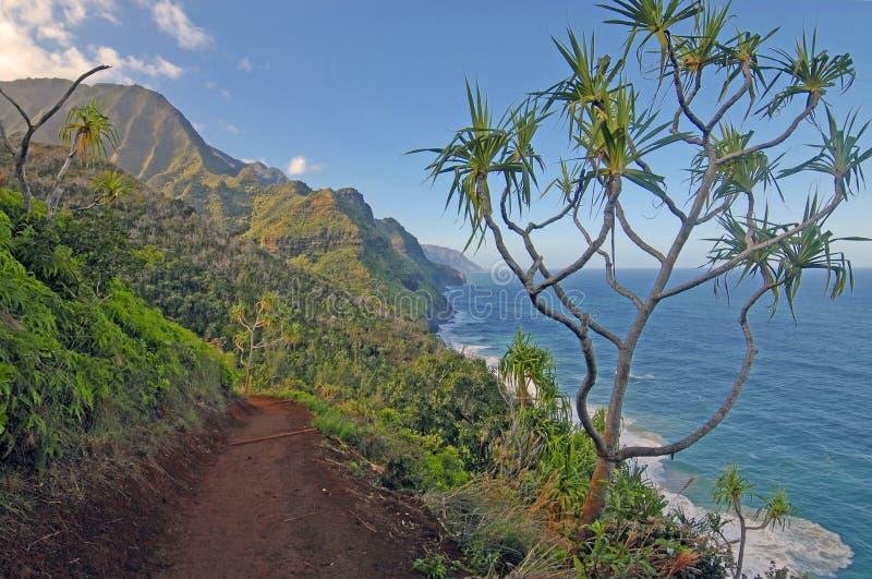Wybrzeże daleko Kauai Hawaje fotografia stock