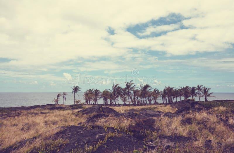 wybrzeże hawajska fotografia stock