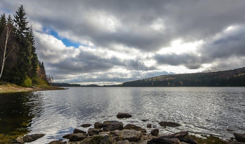 Wybrzeże jeziora w zimowych warunkach pogodowych fotografia royalty free