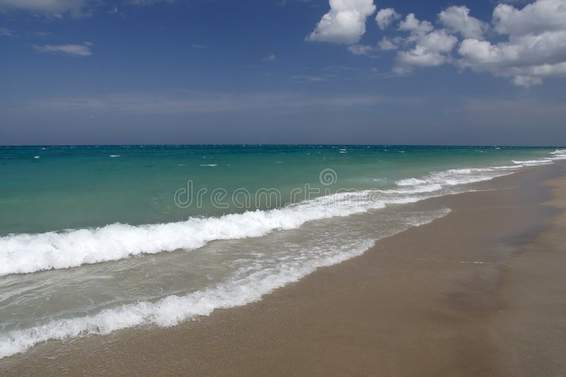 wybrzeże oceanu zdjęcia royalty free