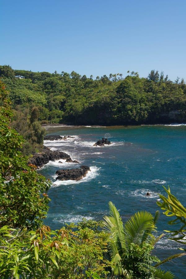 Wybrzeże Onomea zatoka, Hawaje zdjęcia stock