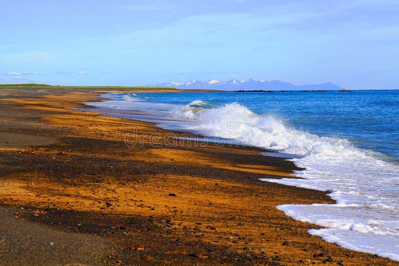 Wybrzeże Snaefellsnes półwysep zdjęcie royalty free