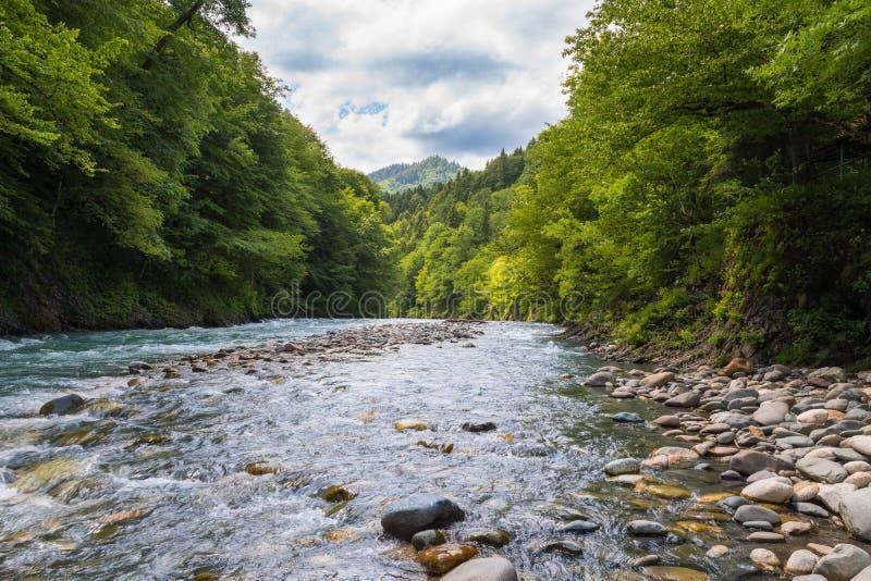 Wybrzeże szybka halna rzeka zdjęcia royalty free