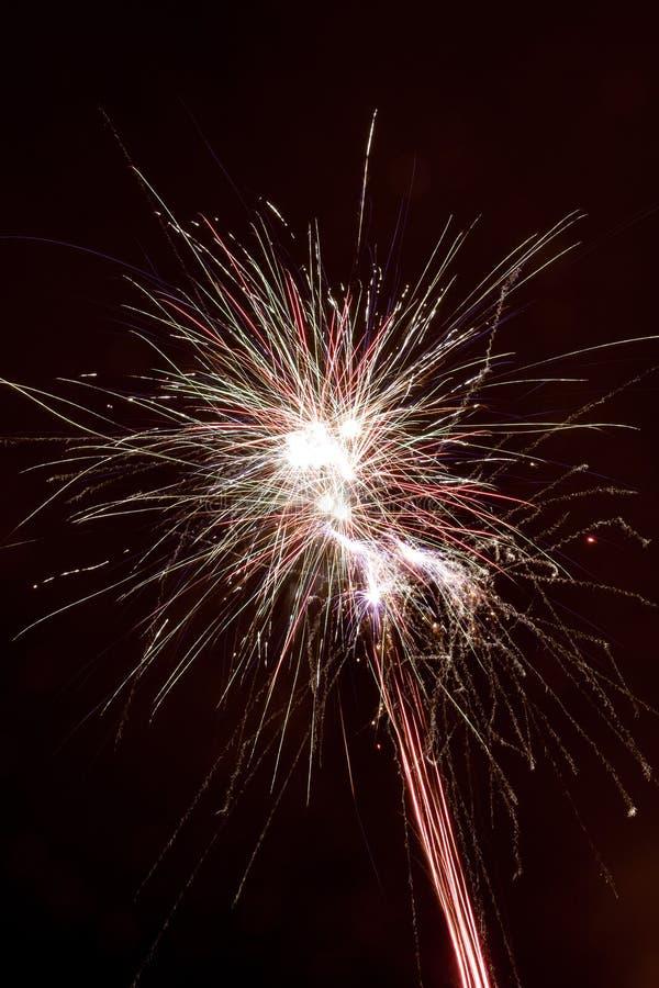 Wybuch fajerwerk przeciw tłu nocne niebo obraz royalty free