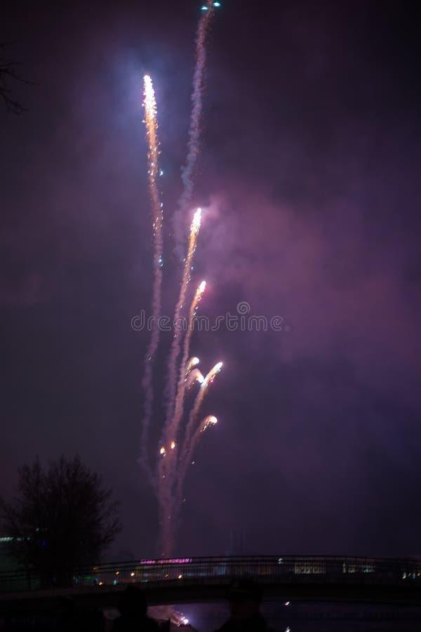 Wybuchowi i kolorowi wakacyjni fajerwerki przy nocnym niebem obraz royalty free
