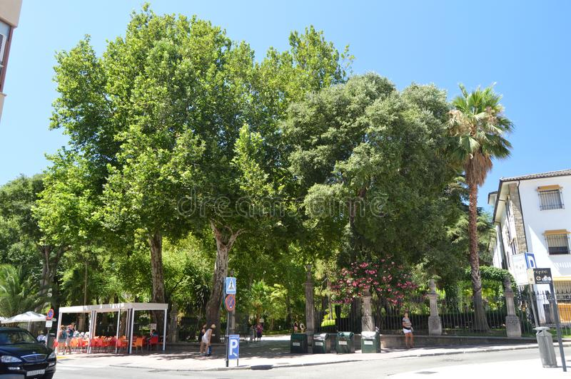 Wycenia Alameda Tajo park W Ronda obrazy stock