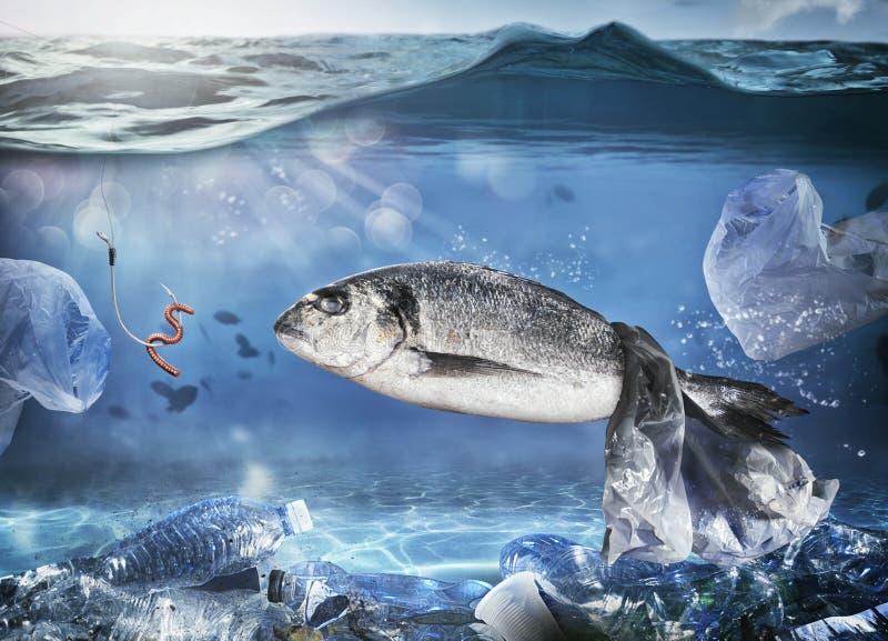 Wychwytana ryba spławową torbą Problem plastikowy zanieczyszczenie pod dennym pojęciem fotografia stock