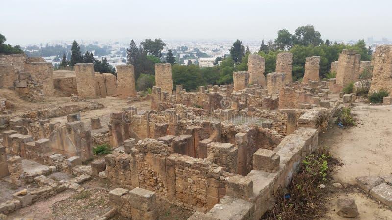 Wycieczka Carthage zdjęcie royalty free