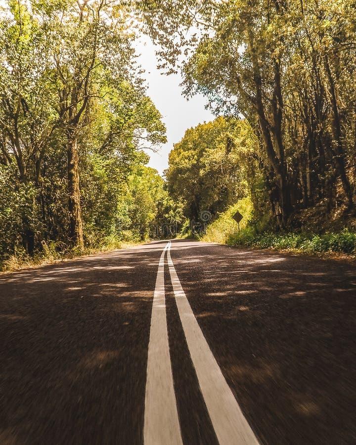 Wycieczka samochodowa widok fotografia stock