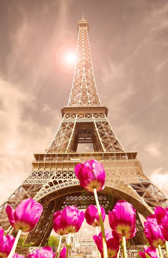 Wycieczka turysyczna Eiffel zdjęcie royalty free