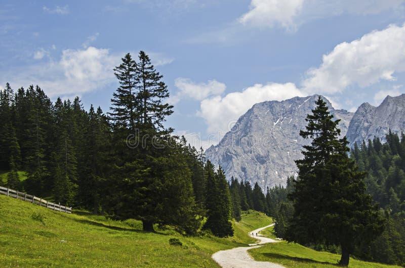 Wycieczkować ścieżkę z niebieskim niebem i pięknym krajobrazem zdjęcia royalty free