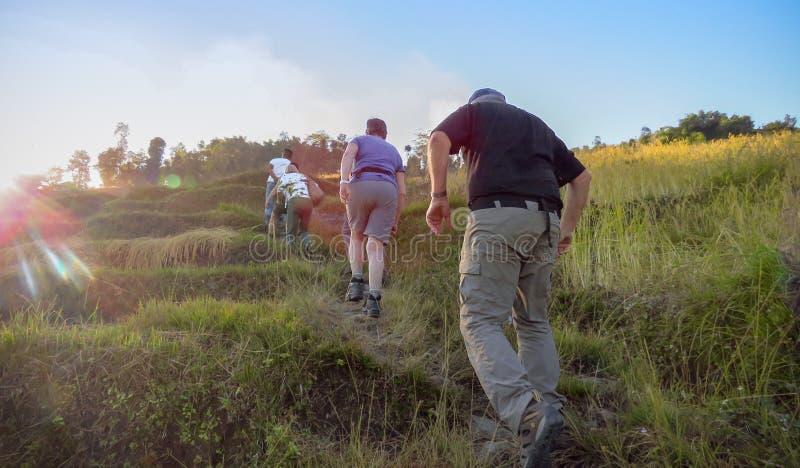 Wycieczkować ciężki wzdłuż ryżowych poly w łunie wieczór słońce, Nepal zdjęcia royalty free