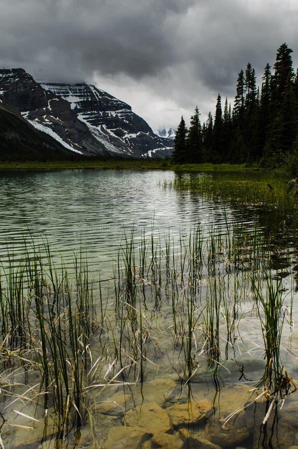 Wycieczkować góra lodowa Jeziornego ślad obraz stock