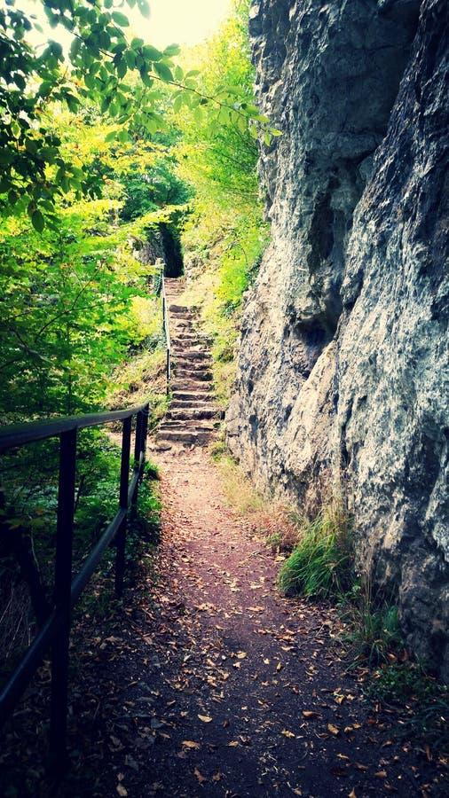 Wycieczkować natury natuur lasu skały obraz stock