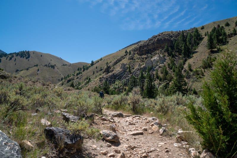 Wycieczkowicz robi jej sposobowi w Idaho do Goldbug Gorących wiosen, w Łososiowym Challis lesie państwowym obrazy stock
