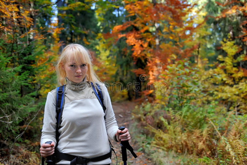 Wycieczkowicz trekking w jesieni górach i lesie zdjęcie stock