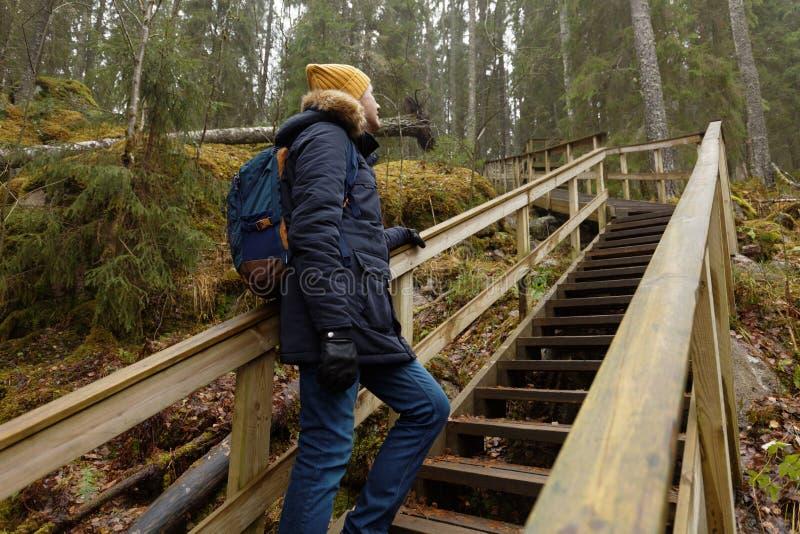 Wycieczkowicz w jesień lesie zdjęcie stock