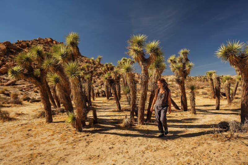 Wycieczkowicz w Joshua drzewa parku narodowym obrazy royalty free