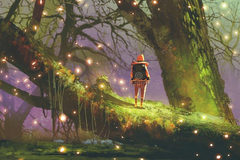 Wycieczkowicz z plecak pozycją na gigantycznym drzewie royalty ilustracja