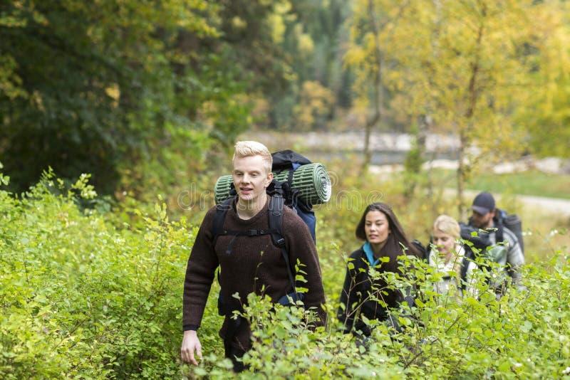 Wycieczkowicz Z przyjaciółmi Chodzi Wśród rośliien W lesie zdjęcia stock