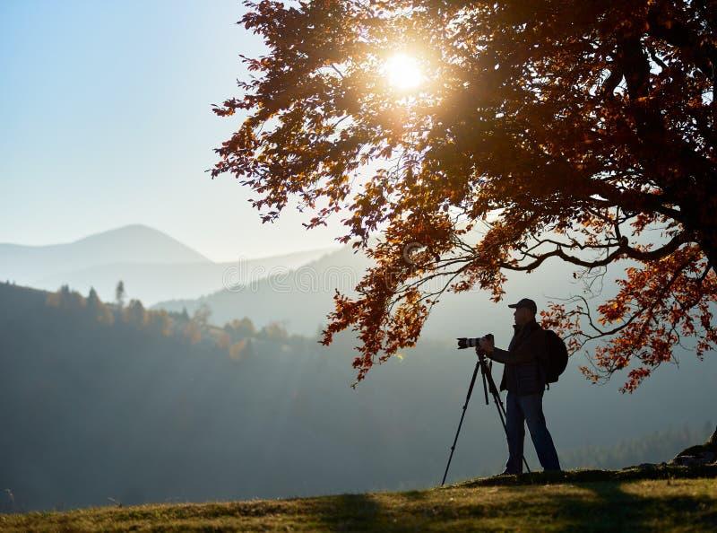 Wycieczkowicza turystyczny m??czyzna z kamer? na trawiastej dolinie na tle g?ra krajobraz pod du?ym drzewem fotografia royalty free