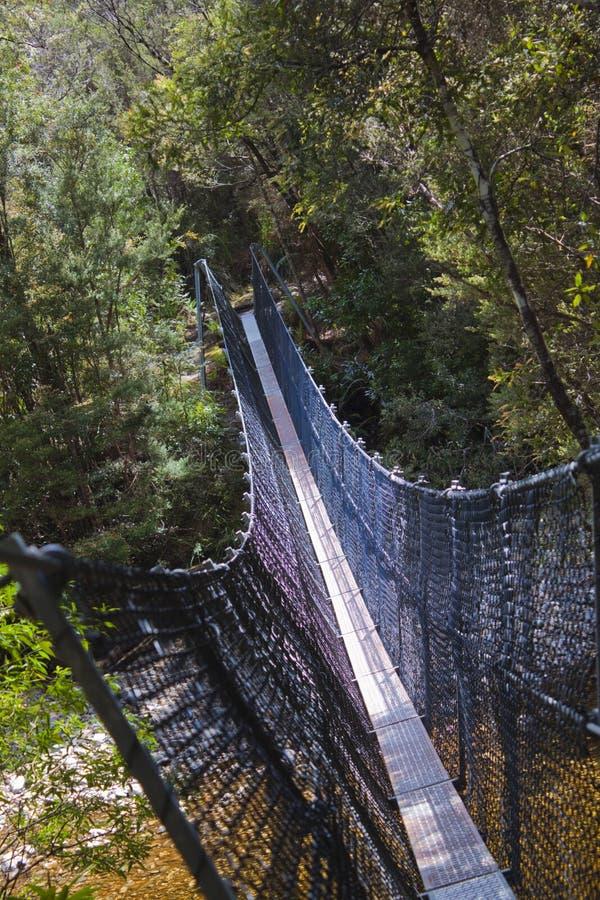 Wycieczkowicza zawieszenia most nad Franklin rzeką