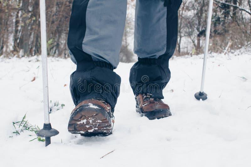 Wycieczkowiczy buty z trekking słupami i getry iść naprzód w zima lesie fotografia stock