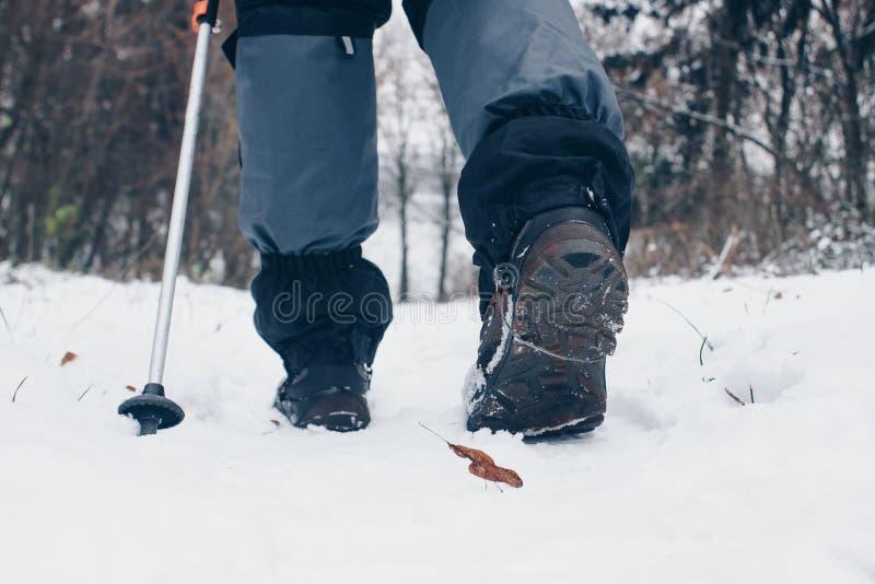 Wycieczkowiczy buty z trekking słupami i getry w zimy lasowym styl życia, iść zacofany fotografia stock