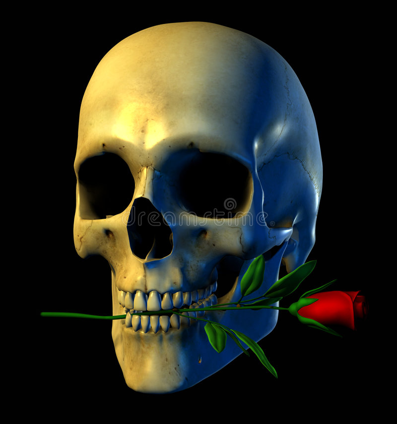 wycinek zawiera ścieżki różaną czaszkę royalty ilustracja
