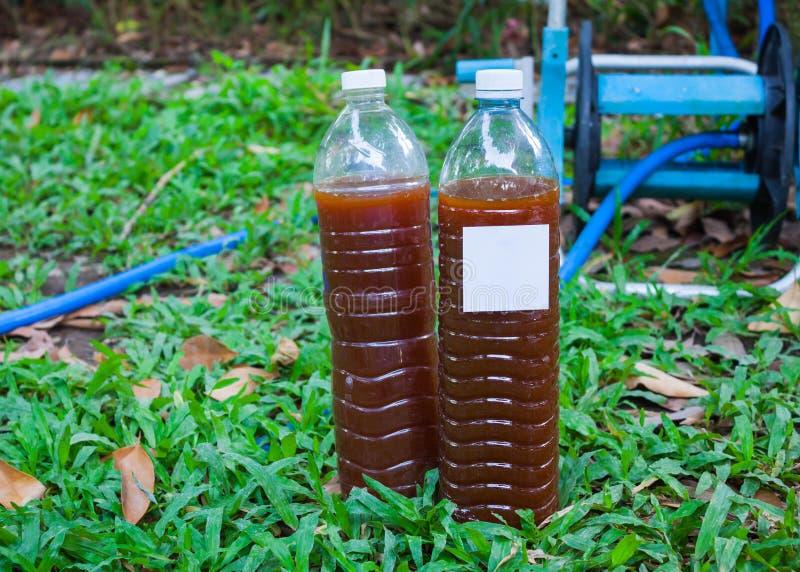 Wydajni mikroorganizmy w butelkach (EM) obrazy stock