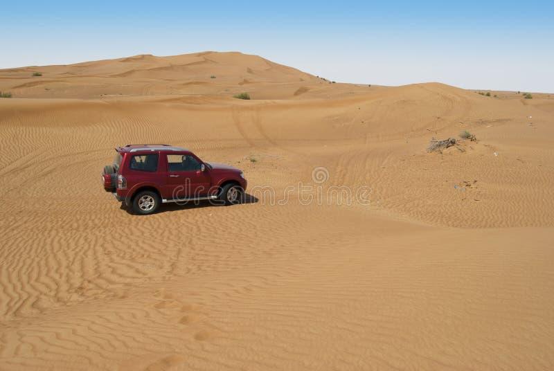 Wydmowa jazda w arabskiej pustyni zdjęcia stock