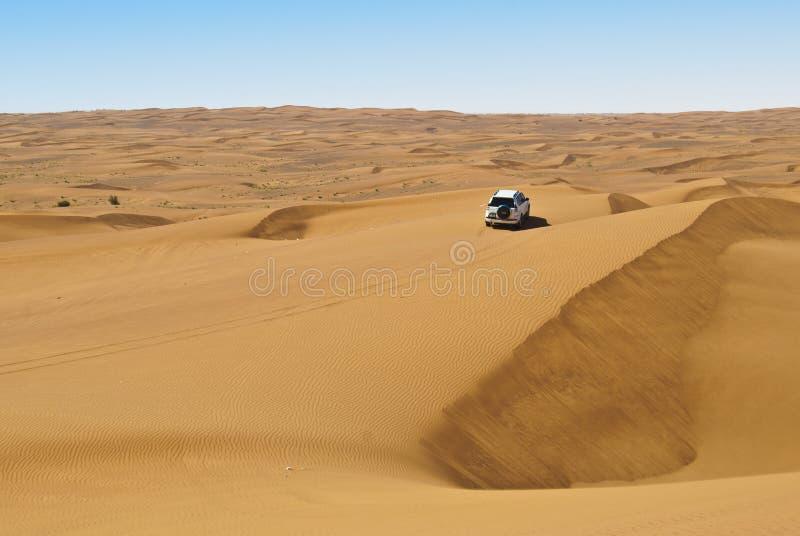 Wydmowa jazda w arabskiej pustyni zdjęcie stock
