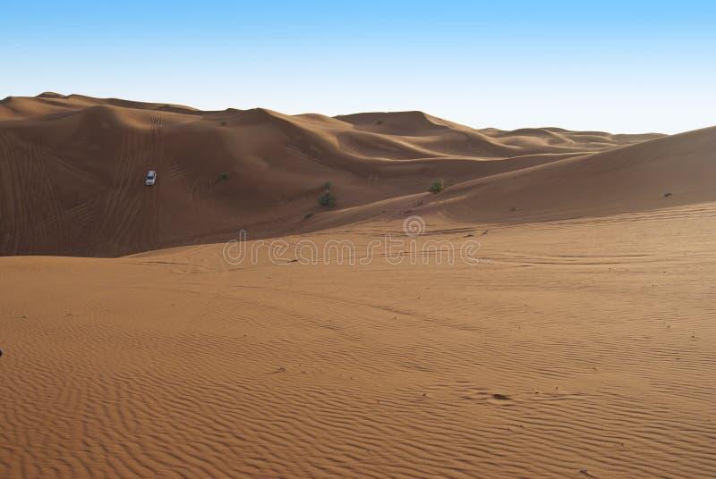 Wydmowa jazda w arabskiej pustyni fotografia stock