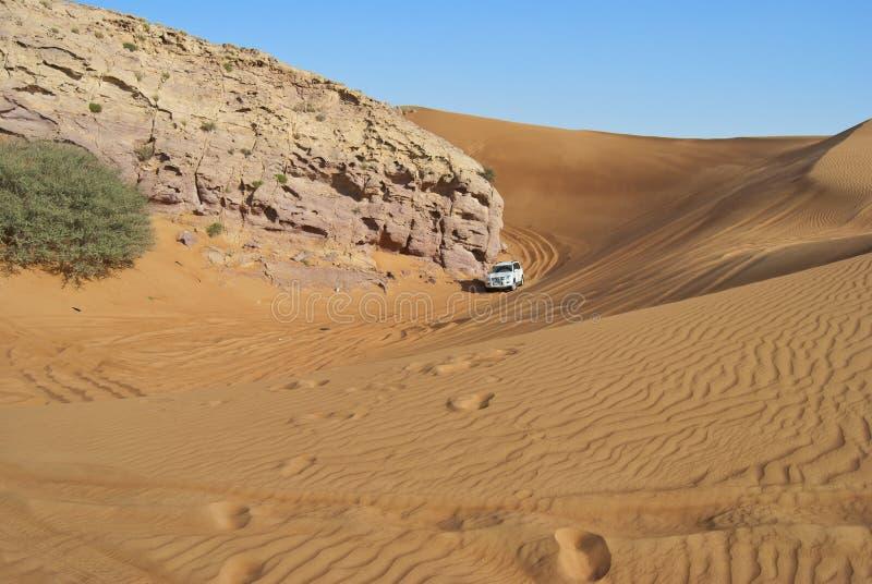 Wydmowa jazda w arabskiej pustyni obrazy stock