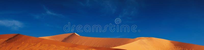 wydmy namib desert zdjęcie royalty free