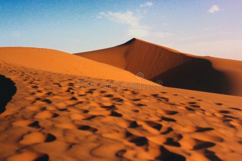 wydmy piasku pustyni Sahara zdjęcia stock
