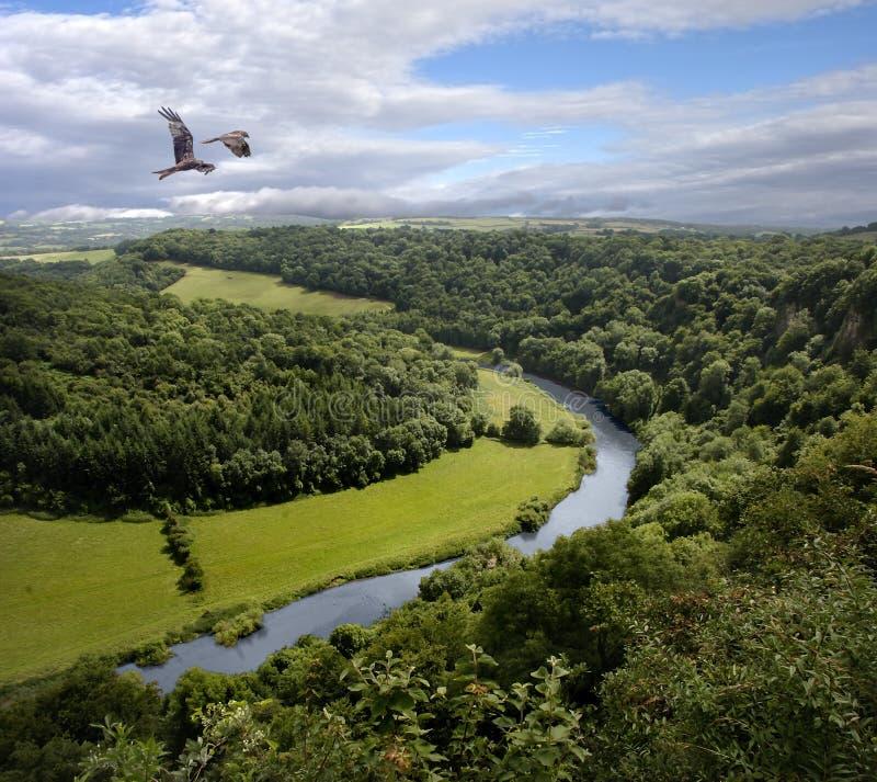 Wye реки стоковые изображения rf