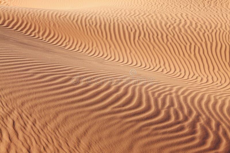 wygina się piasek w zawiły sposób fala zdjęcia royalty free
