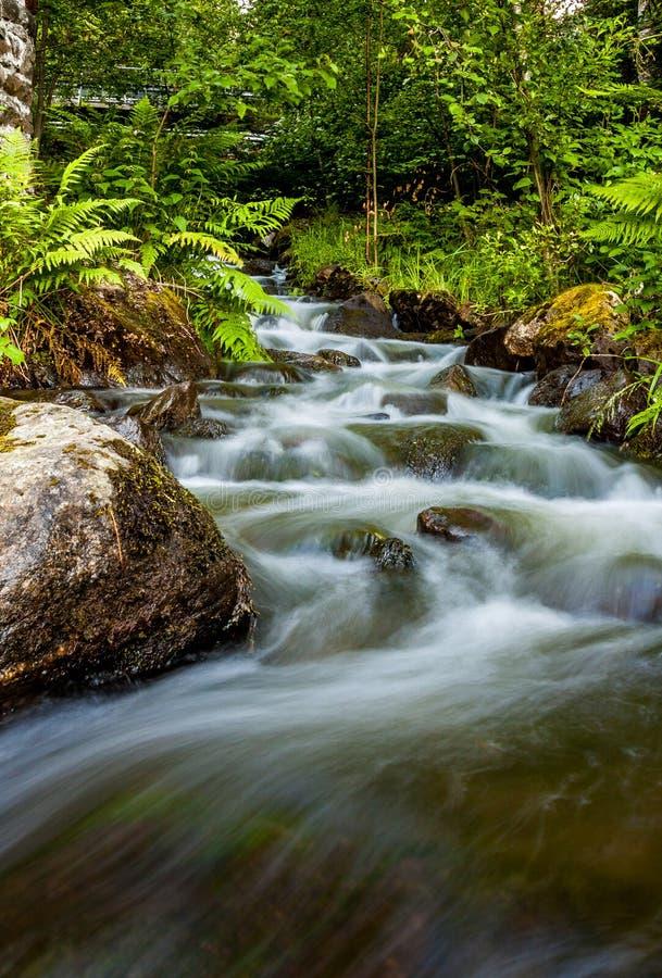 Wyginająca się woda zdjęcie stock