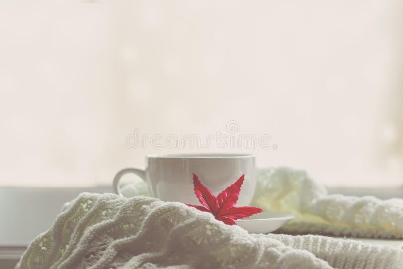 Wygodna zima Biała filiżanka gorąca kawa z czerwonym klonem na książce, ciepła szkocka krata na rocznika windowsill obrazy stock