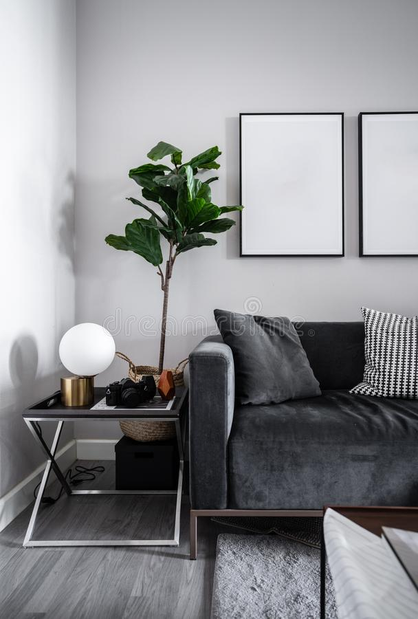 Wygodny Żywy pokoju kąt szara aksamitna tkaniny kanapa, sztuczne rośliny i pusta obrazek rama instaluje na z zmrokiem -, ście obrazy stock