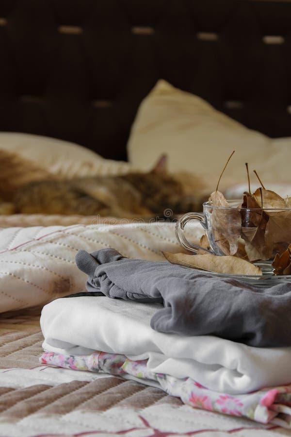 Wygodny salowy jesień nastrój, kobiet ubrania składał na łóżku z kawowym kubkiem jesień liście pełno obrazy royalty free