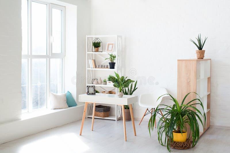 Wygodny wewnętrzny projekt nowożytny pracowniany mieszkanie w skandynawa stylu Przestronny ogromny pokój w lekkich kolorach z zie fotografia royalty free