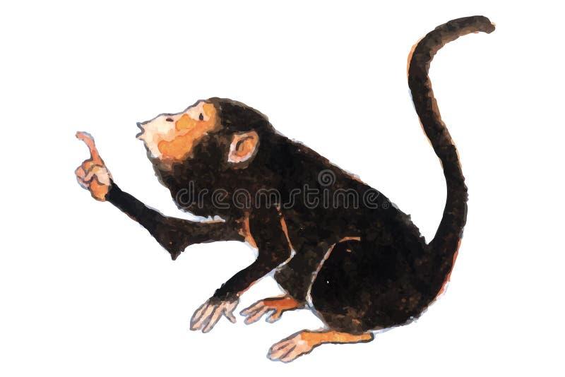 Wyjec małpy, prezerwy, araguatos lub carayà ¡ s Alouatta które zamieszkuje dżungle północ Ameryka Południowa, obrazy royalty free