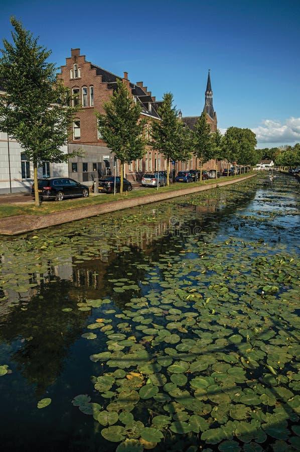 Wykładający kanał z nadwodnymi roślinami, bascule mostem i cegła domami przy bankiem na zmierzchu w Weesp, fotografia royalty free