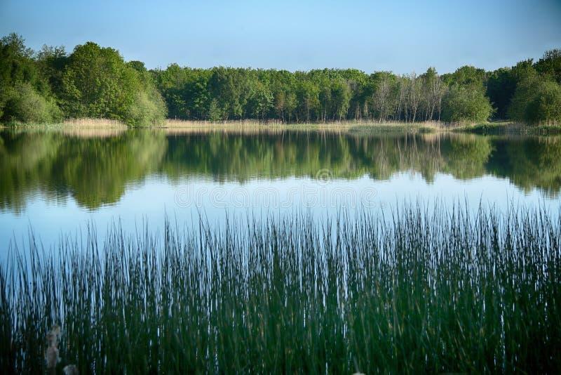Wykeham jeziora, Scarborough, North Yorkshire zdjęcia stock