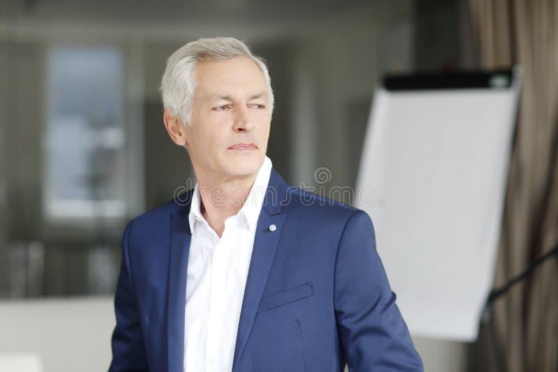 Wykonawczy biznesmena portret zdjęcia stock