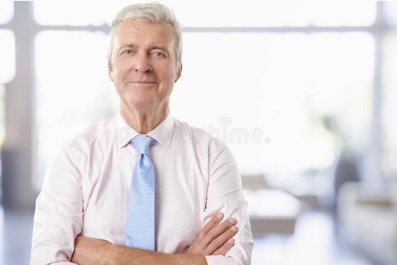 Wykonawczy starszy biznesmen zdjęcia stock