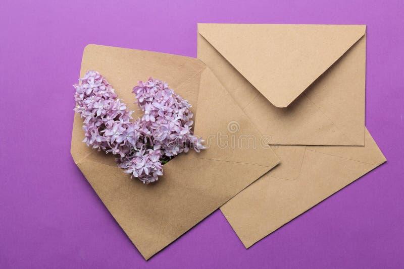 Wykonuje ręcznie kopertę z sprig bez na jaskrawym modnym lilym tle Odg?rny widok obraz royalty free