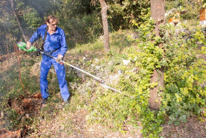 Wymóg prawny dla szczotkarskiej polany, walka przeciw pożar lasu fotografia royalty free